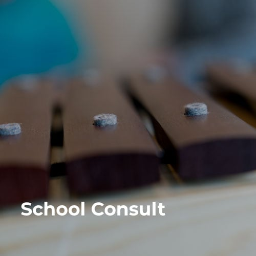Case-Studies-School-COnsult